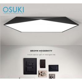 OSUKI LED 18W 30cm Ceiling Light BW98 (White Light)