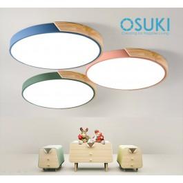 OSUKI LED 18W 30cm Ceiling Light GW77 (White Light)